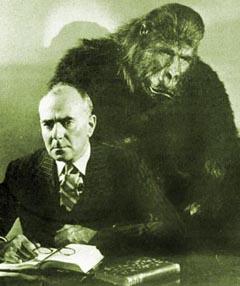 Zucco Gorilla